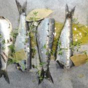 sardinas-papillote-fin