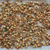 Snack legumbres y semillas